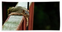Resting Squirrel Bath Towel