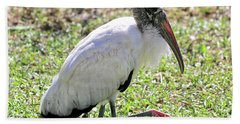 Resting Wood Stork Hand Towel