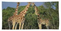 Reticulated Giraffe Trio Hand Towel