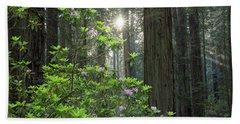 Rhodies And Redwoods Hand Towel