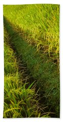 Rice Field Hiking Bath Towel