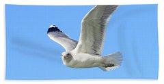 Ring Billed Gull 2 Hand Towel