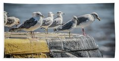 Ring Billed Gulls Hand Towel by Ray Congrove