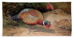 Ring Necked Pheasant Hand Towel by Joseph Wolf