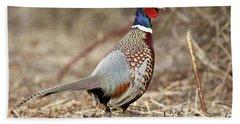 Ring-necked Pheasant Stony Brook New York Hand Towel