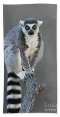 Ring-tailed Lemur #6 V2 Hand Towel