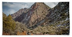 Hand Towel featuring the photograph Rio Grande Racecourse In Winter by Atom Crawford