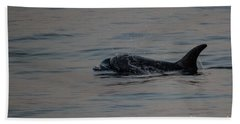 Risso's Dolphins Hand Towel by Suzanne Luft