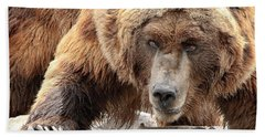 River Bed Grizzly Hand Towel by Steve McKinzie