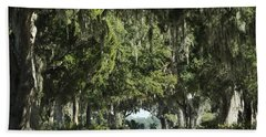 Road With Live Oaks Hand Towel