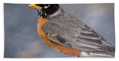 Hand Towel featuring the photograph Robin by Douglas Stucky