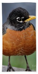 Hand Towel featuring the photograph Robin II by Douglas Stucky
