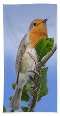 Robin In Eden Hand Towel