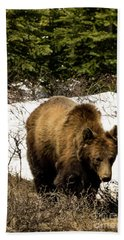 Rockies Grizzly Hand Towel