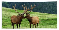 Rocky Mountain Elk 2 Bath Towel