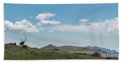 Rocky Mountain Elk Hand Towel by Sharon Seaward