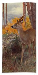 Roe Deer Bath Towel