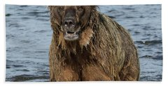 Bath Towel featuring the photograph Rogue Bear  by Cheryl Strahl