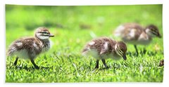 Hand Towel featuring the photograph Rogue Duckling, Yanchep National Park by Dave Catley