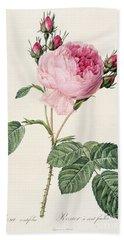 Rosa Centifolia Bath Towel