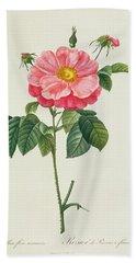Rosa Gallica Flore Marmoreo Bath Towel