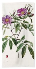 Rosa Hudsoniana Salicifolia Bath Towel