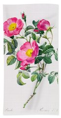 Rosa Lumila Hand Towel by Pierre Joseph Redoute