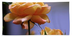 Rose 1156 H_2 Hand Towel