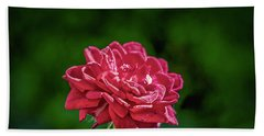 Rose August 2016.  Hand Towel by Leif Sohlman