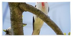 Hand Towel featuring the photograph Rose-breasted Grosbeak Looking At You by Ricky L Jones