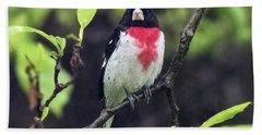 Rose-breasted Grosbeak On Tree Branch Bath Towel