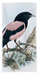 Rose Colored Starling Hand Towel