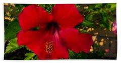 Rose Of Sharon Hand Towel