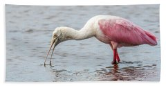 Hand Towel featuring the photograph Roseate Spoonbill by Paul Freidlund