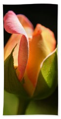 Rosebud Hand Towel by Ralph A  Ledergerber-Photography