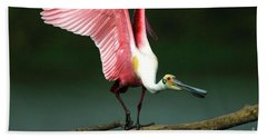 Rosiette Spoonbill Texas Hand Towel by Bob Christopher