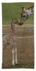 Rothschild Giraffe Giraffa Hand Towel