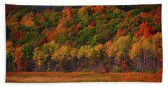 Round Valley State Park 2 Bath Towel by Raymond Salani III
