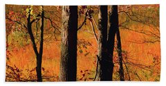Round Valley State Park 3 Hand Towel by Raymond Salani III