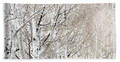 Row Of White Birch Trees Hand Towel