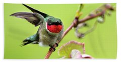 Hand Towel featuring the photograph Ruby Garden Hummingbird by Christina Rollo