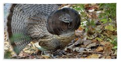 Ruffed Up- Ruffed Grouse Displaying Bath Towel by David Porteus