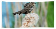 Ruffled Feathers Hand Towel by Mike Dawson