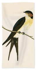 Rufous Swallow Hand Towel by English School