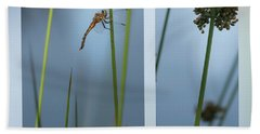 Rushes And Dragonfly Bath Towel