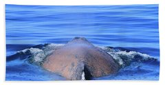 Rusty Humpback Bath Towel by Shoal Hollingsworth
