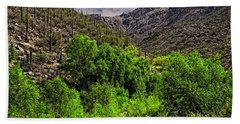 Bath Towel featuring the photograph Sabino Canyon H33 by Mark Myhaver