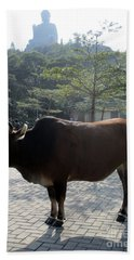 Hand Towel featuring the photograph Sacred Cow 3 by Randall Weidner