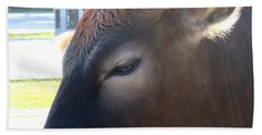 Hand Towel featuring the photograph Sacred Cow 4 by Randall Weidner