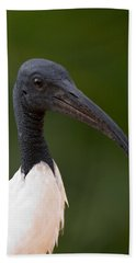 Sacred Ibis Bath Towel